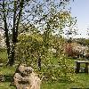CercidiphyllumJaponicumPendulum.jpg 638 x 850 px 203.66 kB
