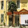 Trachycarpus12.jpg 1086 x 815 px 188.45 kB